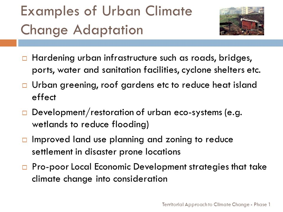 Examples of Urban Climate Change Adaptation