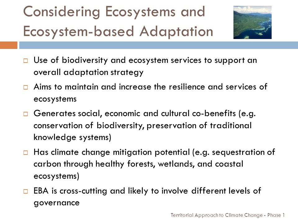 Considering Ecosystems and Ecosystem-based Adaptation