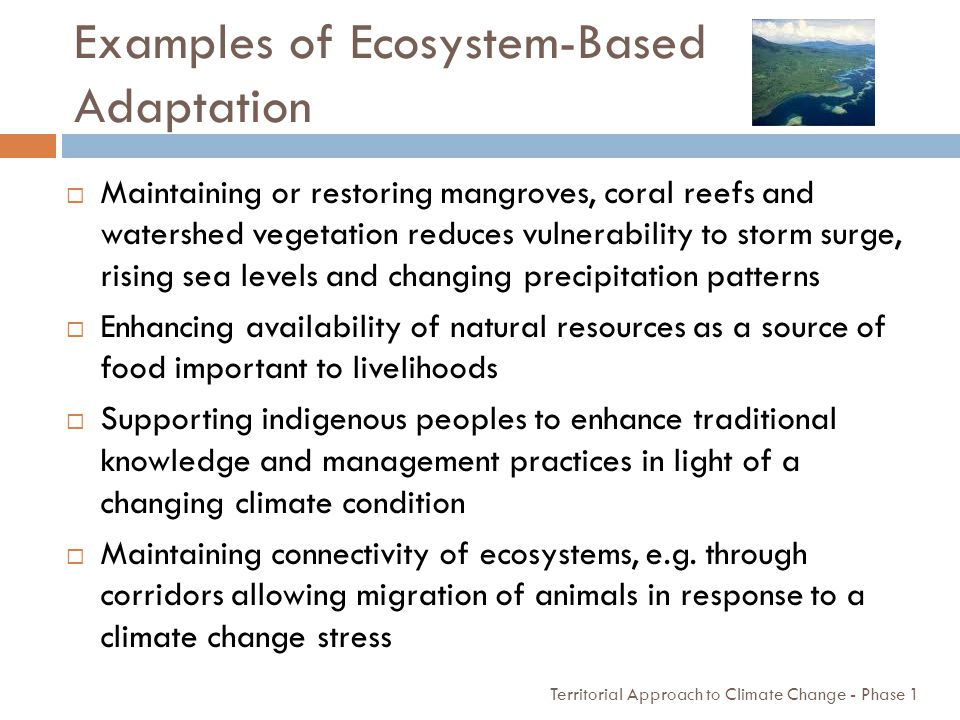 Examples of Ecosystem-Based Adaptation