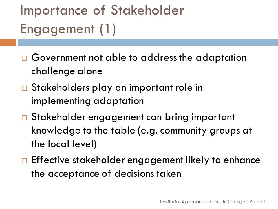 Importance of Stakeholder Engagement (1)