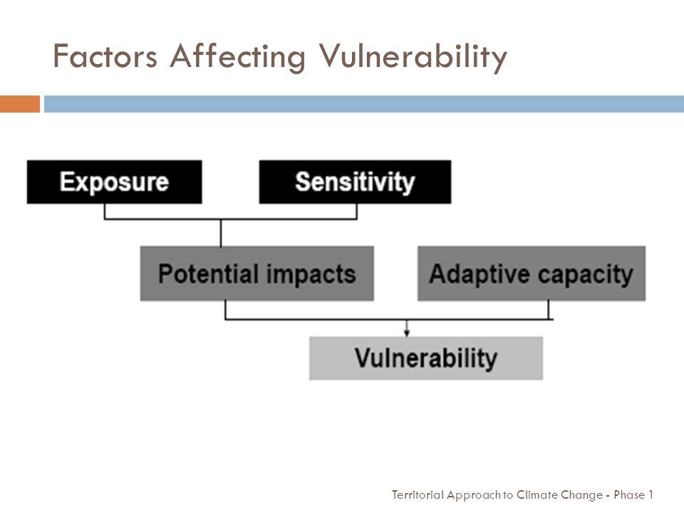 Factors Affecting Vulnerability