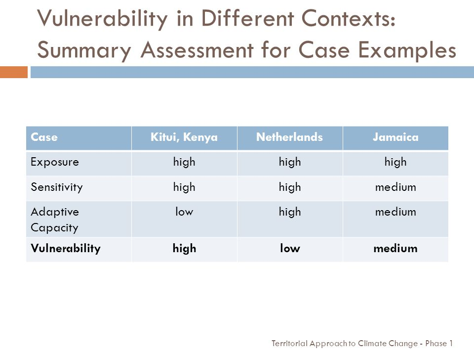 Vulnerability in Different Contexts: Summary Assessment for Case Examples