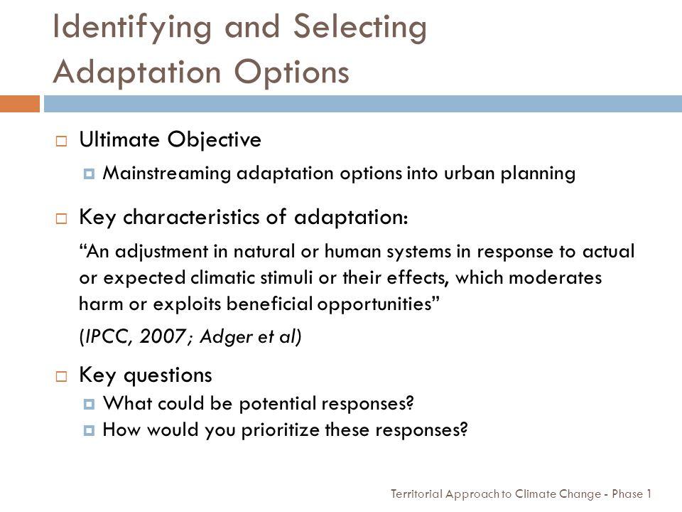 Identifying and Selecting Adaptation Options