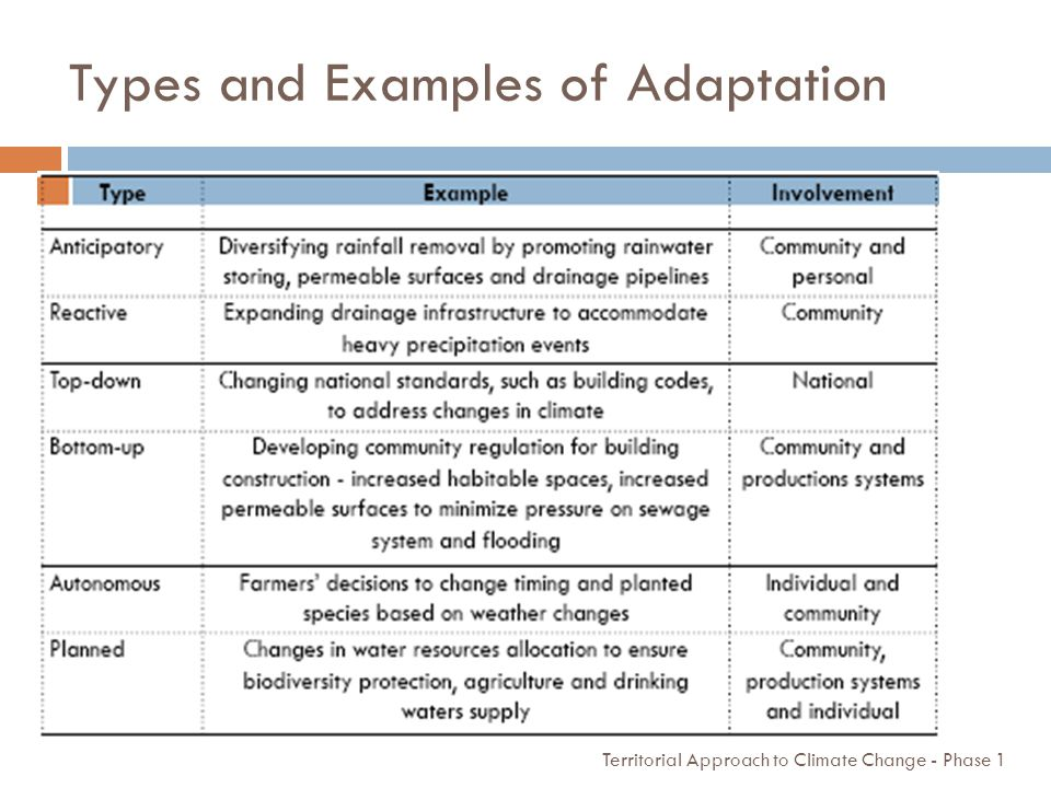 Types and Examples of Adaptation