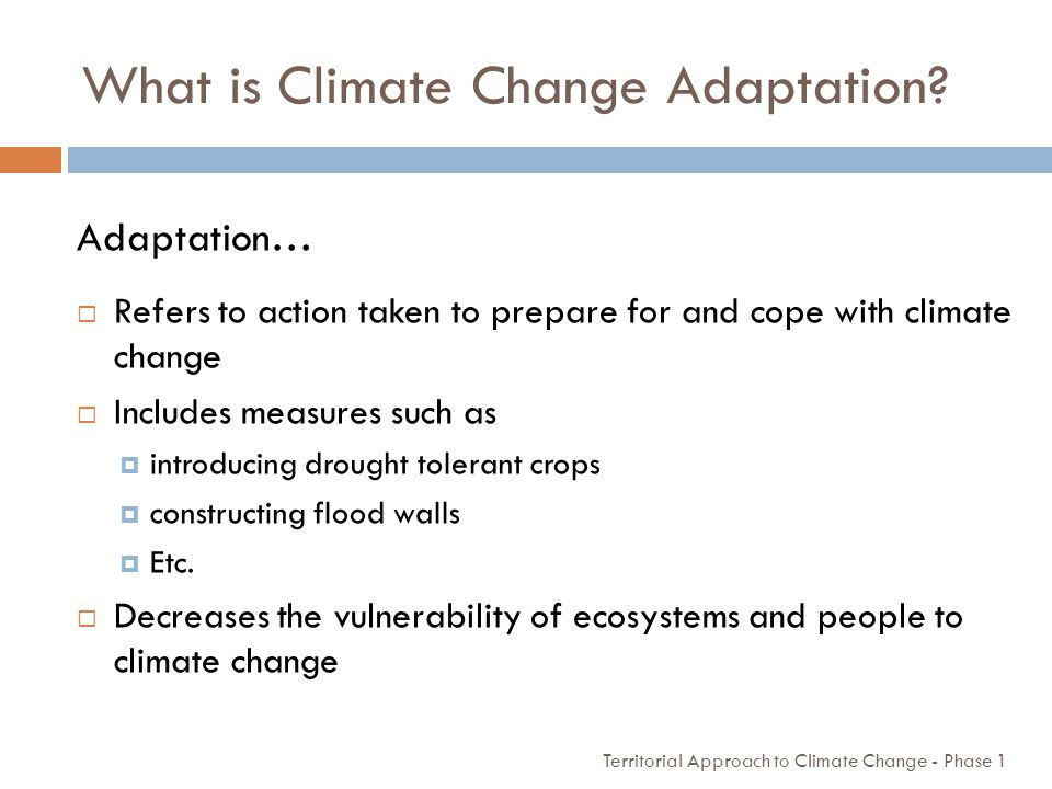 What is Climate Change Adaptation