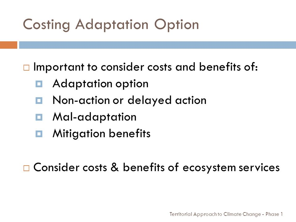Costing Adaptation Option