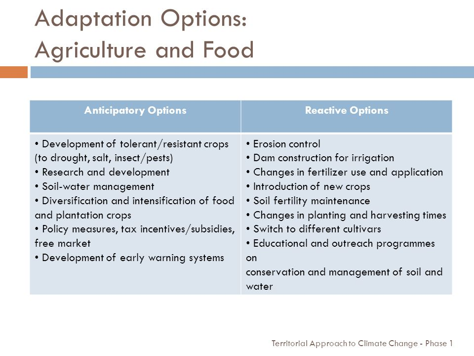 Adaptation Options: Agriculture and Food