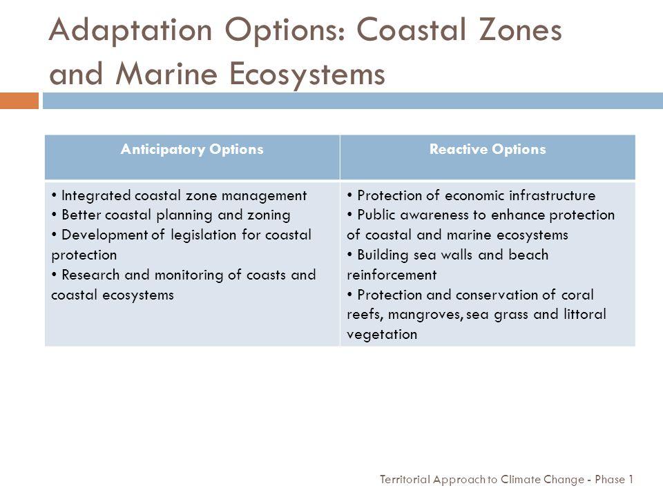 Adaptation Options: Coastal Zones and Marine Ecosystems