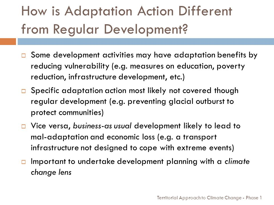 How is Adaptation Action Different from Regular Development