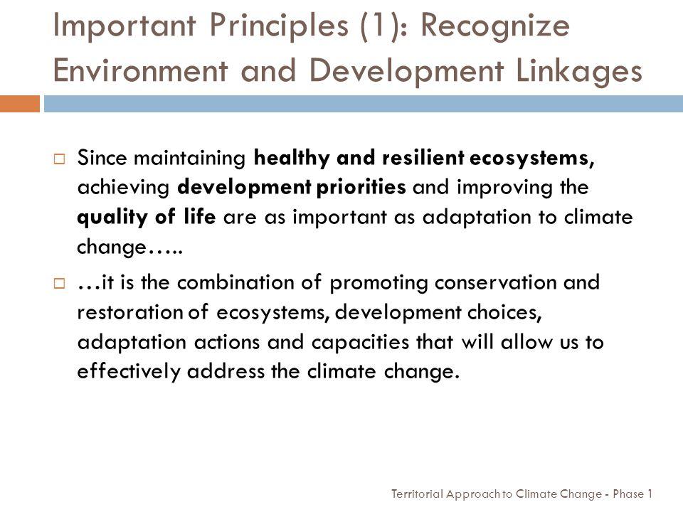 Important Principles (1): Recognize Environment and Development Linkages