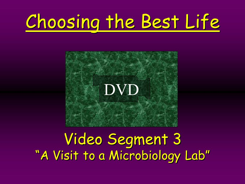 Video Segment 3 A Visit to a Microbiology Lab