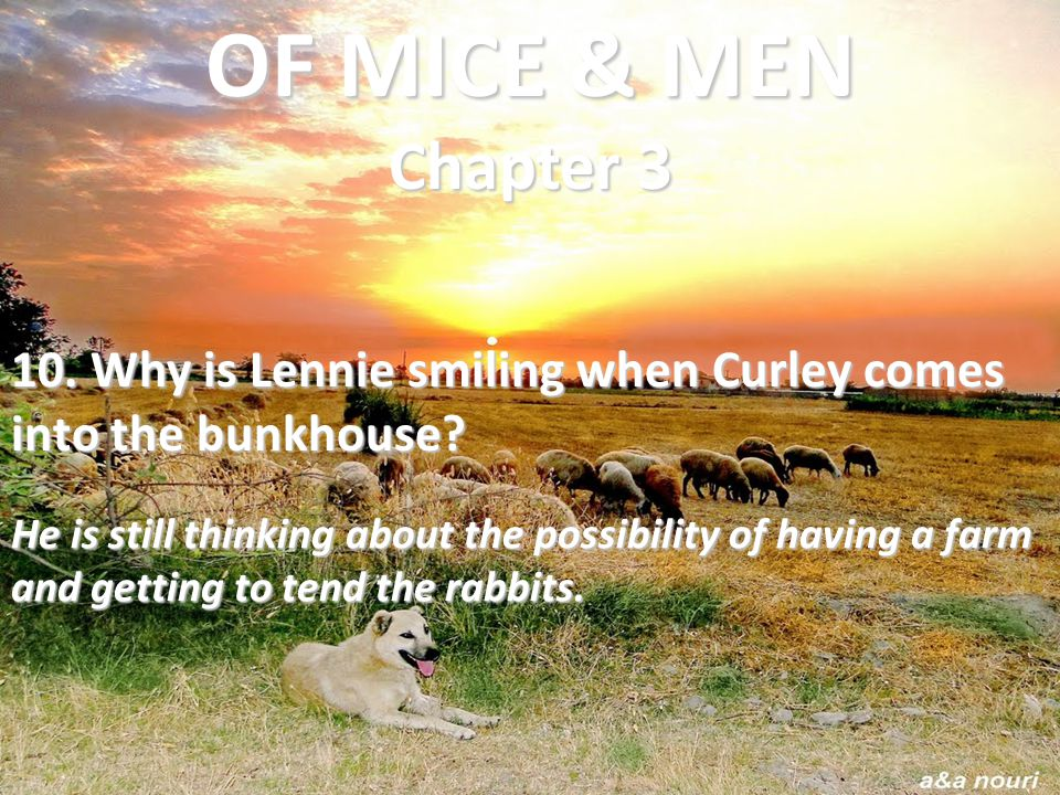 OF MICE & MEN Chapter 3 10. Why is Lennie smiling when Curley comes into the bunkhouse