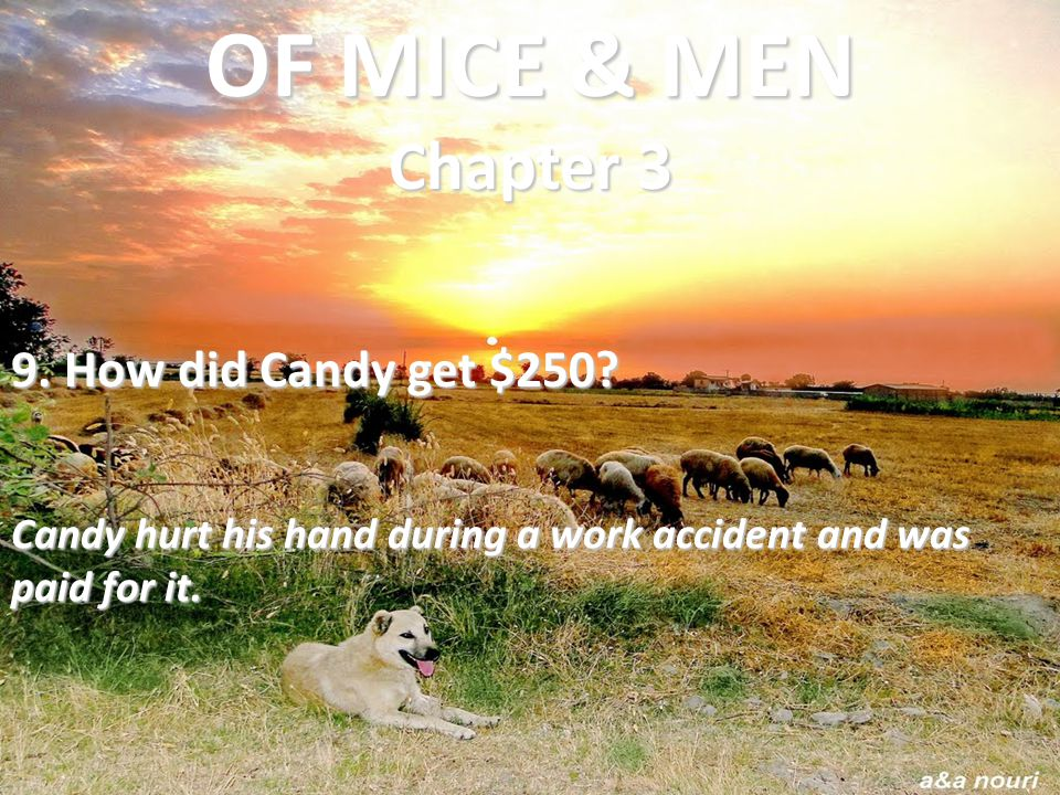 OF MICE & MEN Chapter 3 9. How did Candy get $250
