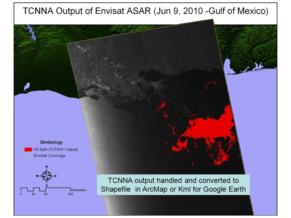 TCNNA output handled and converted to Shapefile in ArcMap or Kml for Google Earth