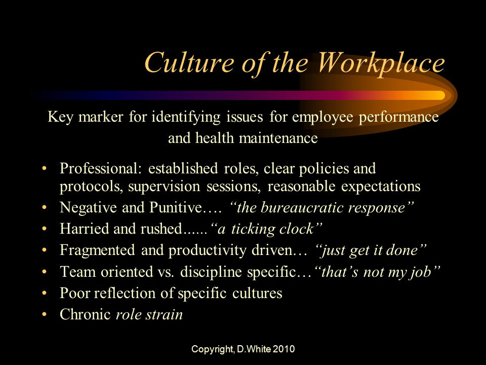 Culture of the Workplace