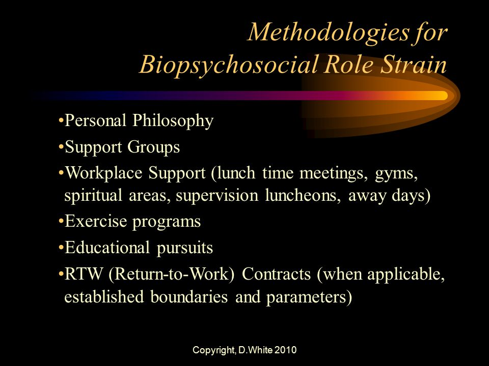 Methodologies for Biopsychosocial Role Strain