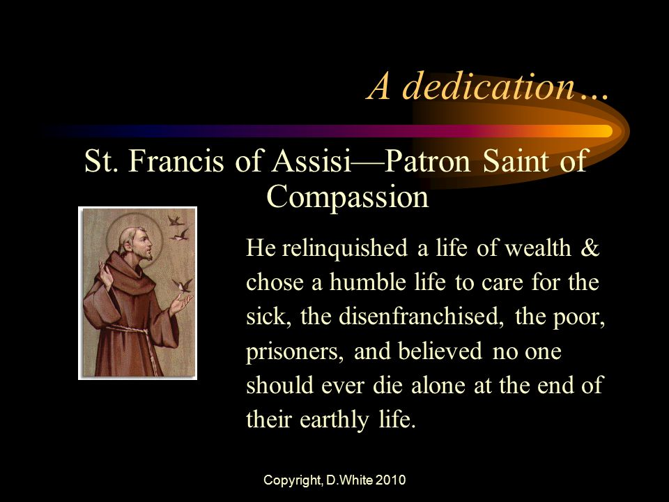 St. Francis of Assisi—Patron Saint of Compassion