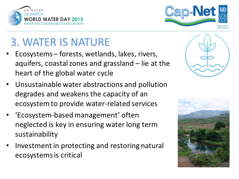 3. WATER IS NATURE Ecosystems – forests, wetlands, lakes, rivers, aquifers, coastal zones and grassland – lie at the heart of the global water cycle.