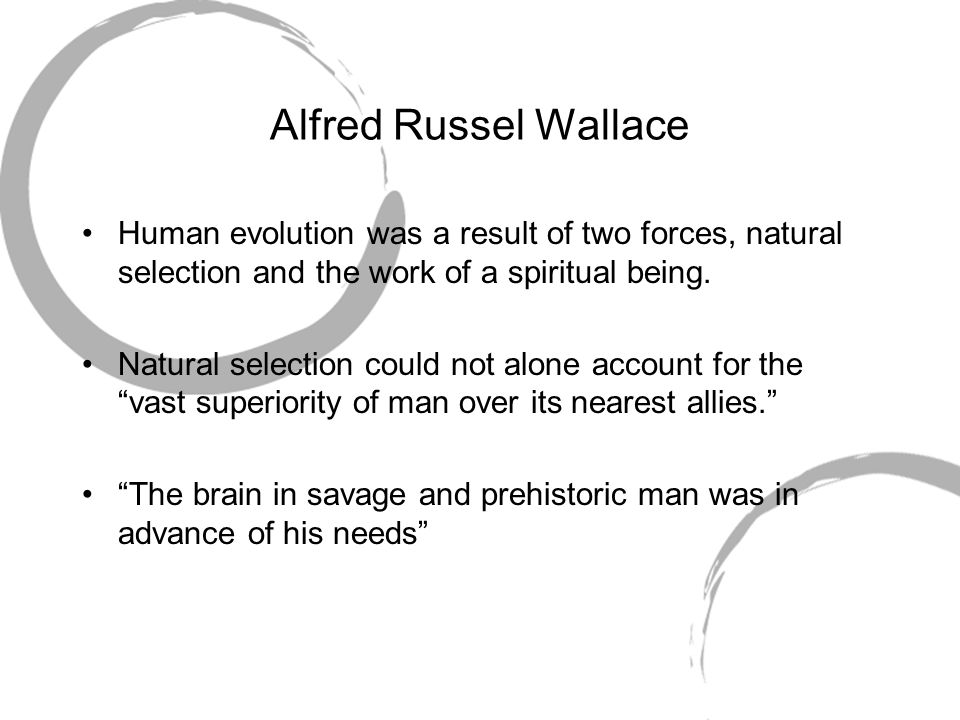 Alfred Russel Wallace Human evolution was a result of two forces, natural selection and the work of a spiritual being.