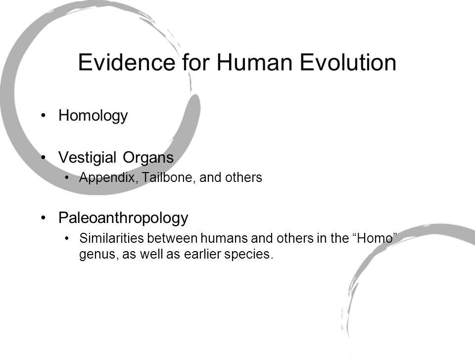 Evidence for Human Evolution