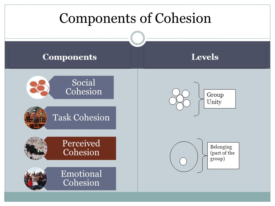 Components of Cohesion