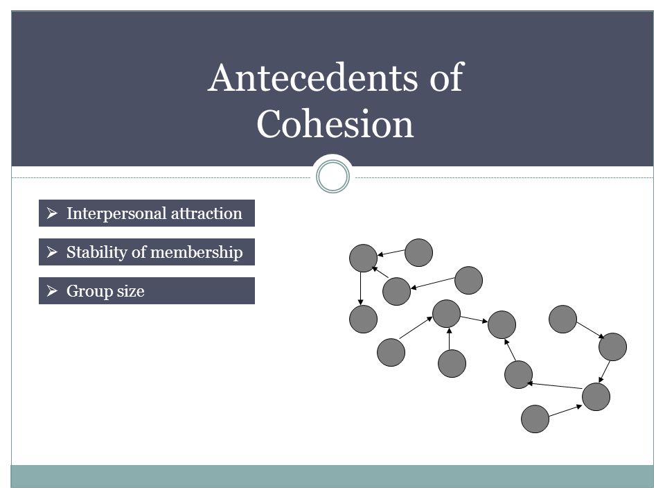 Antecedents of Cohesion