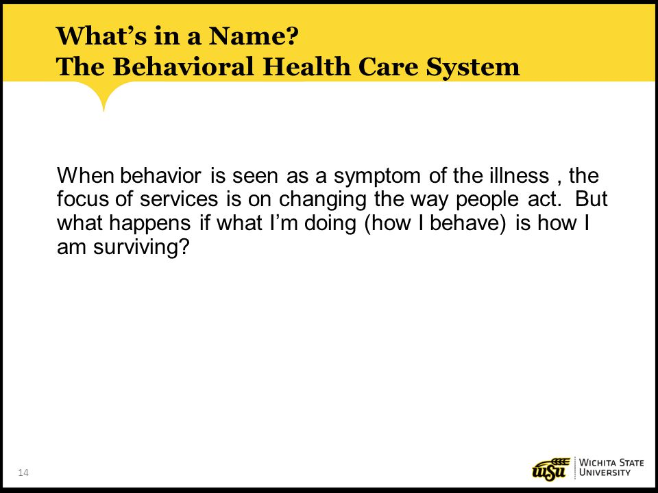 What's in a Name The Behavioral Health Care System