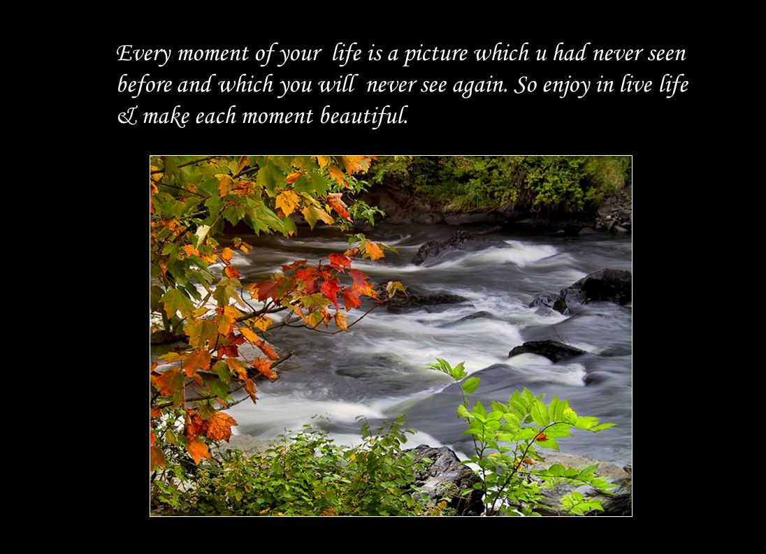 Every moment of your life is a picture which u had never seen before and which you will never see again.
