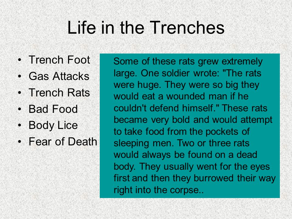 Life in the Trenches Trench Foot Gas Attacks Trench Rats Bad Food