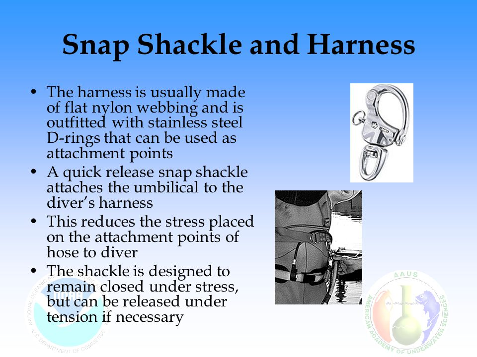 Snap Shackle and Harness