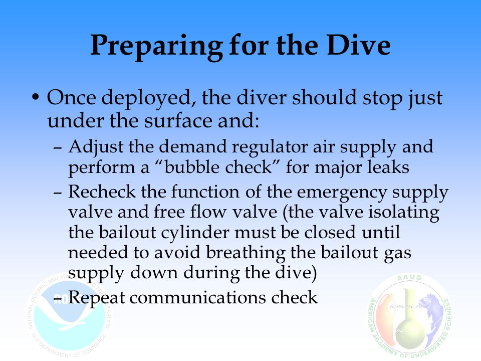 Preparing for the Dive Once deployed, the diver should stop just under the surface and: