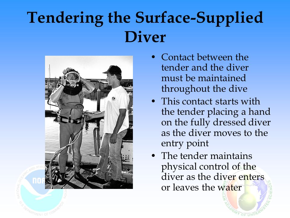 Tendering the Surface-Supplied Diver