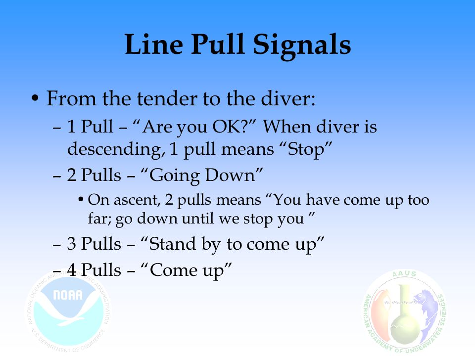 Line Pull Signals From the tender to the diver: