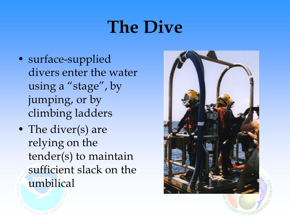 The Dive surface-supplied divers enter the water using a stage , by jumping, or by climbing ladders.