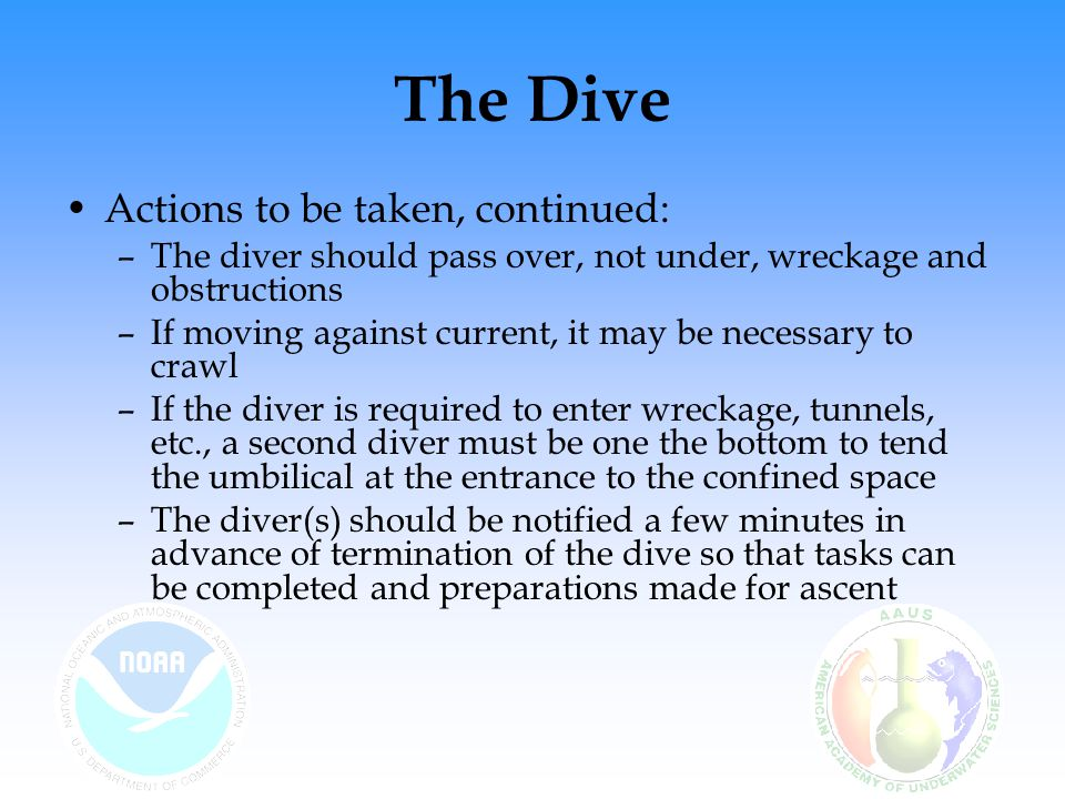 The Dive Actions to be taken, continued: