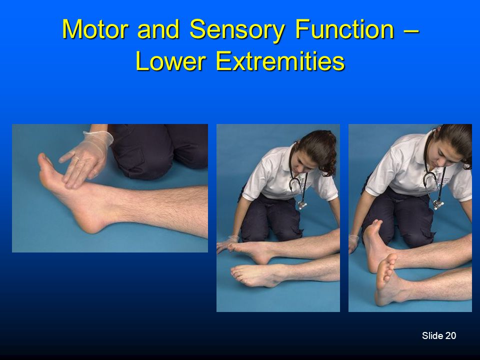 Motor and Sensory Function – Lower Extremities