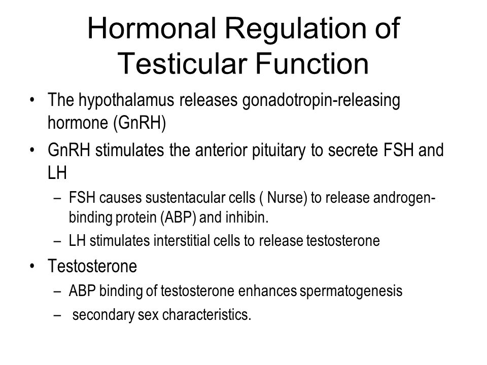 Hormonal Regulation of Testicular Function