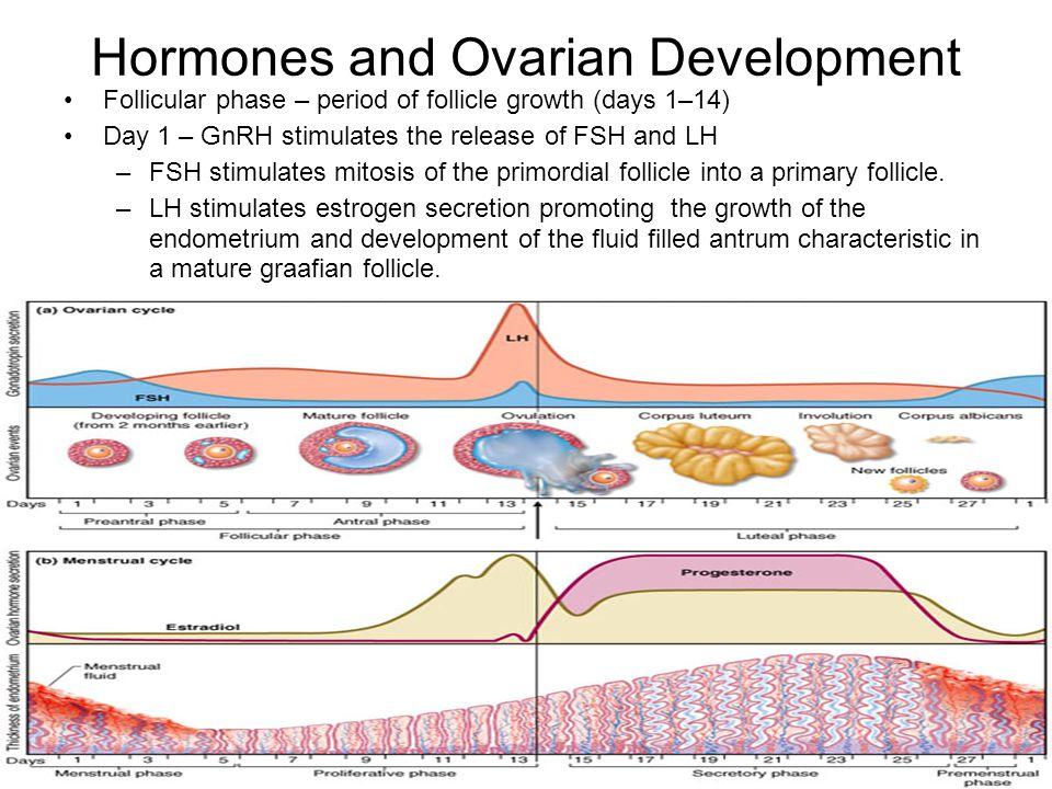 Hormones and Ovarian Development