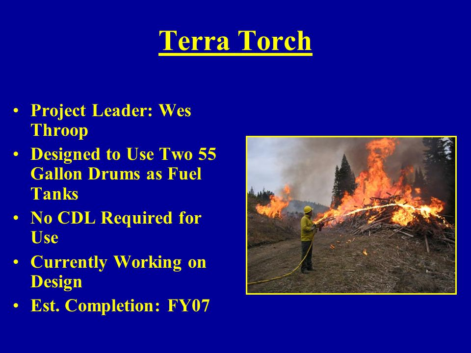 Terra Torch Project Leader: Wes Throop