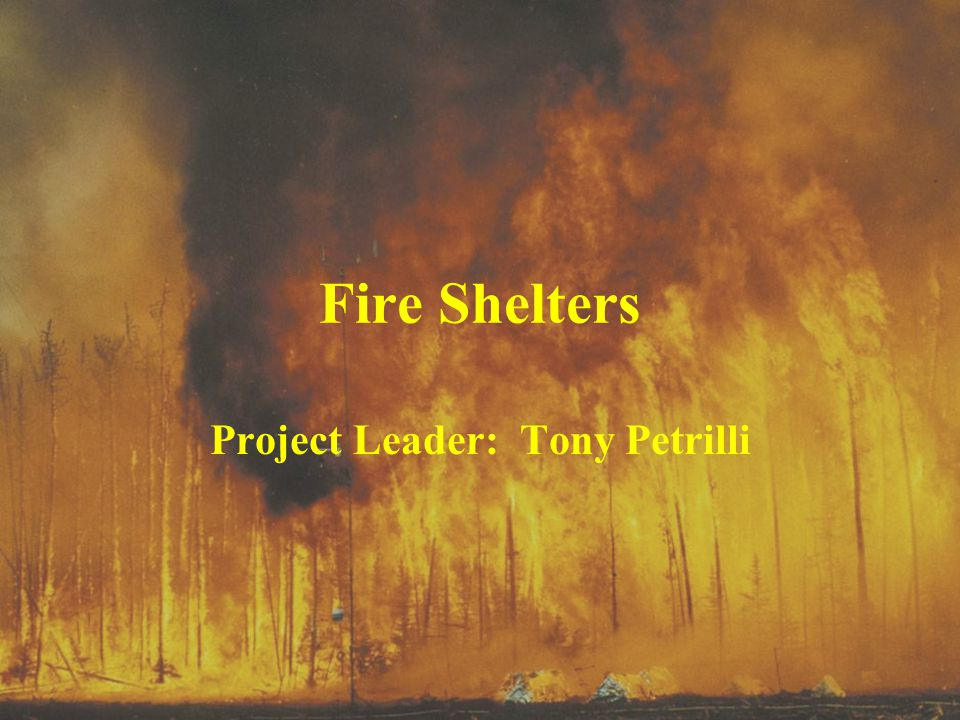 Project Leader: Tony Petrilli