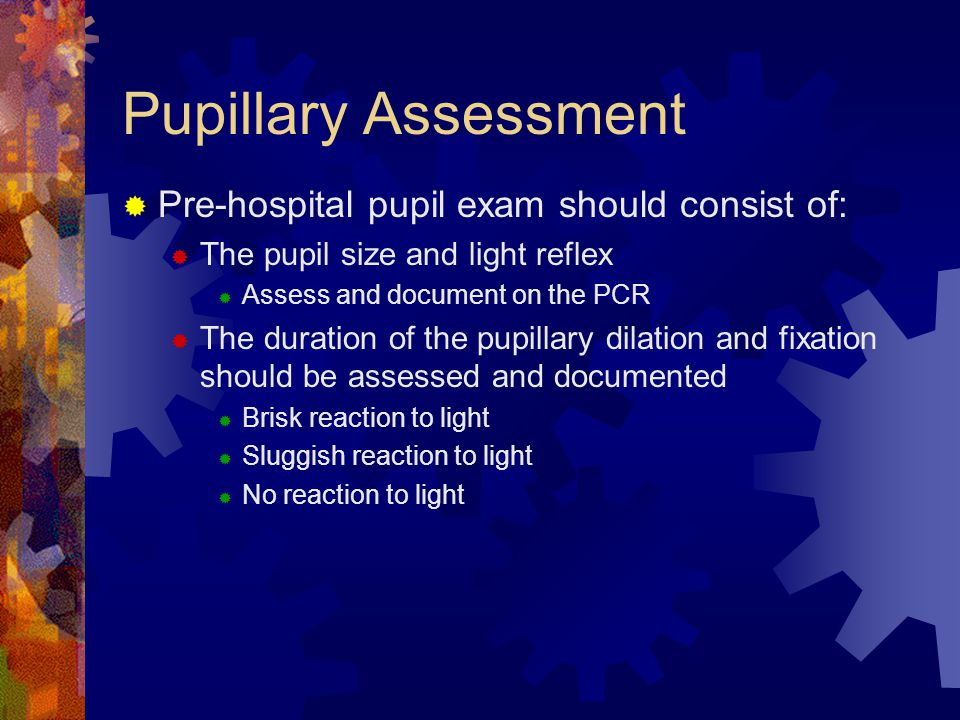 Pupillary Assessment Pre-hospital pupil exam should consist of: