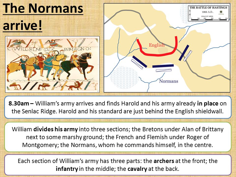 The Normans arrive!