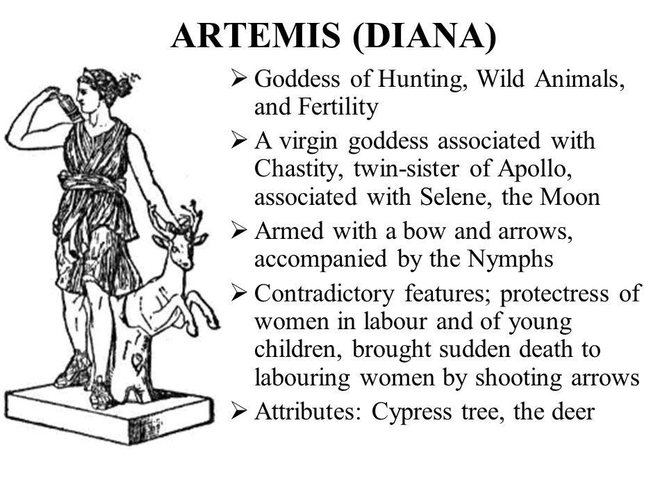 ARTEMIS (DIANA) Goddess of Hunting, Wild Animals, and Fertility