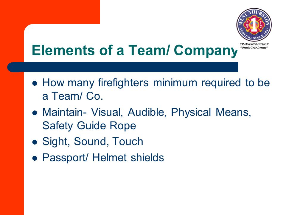 Elements of a Team/ Company