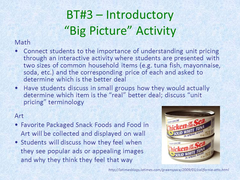 BT#3 – Introductory Big Picture Activity