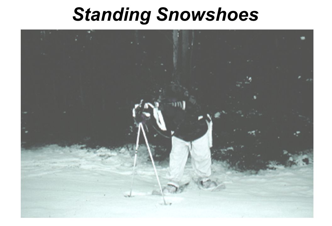 Standing Snowshoes Same as skiing Standing-