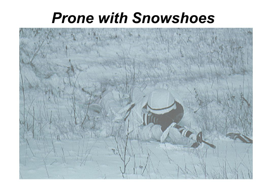 Prone with Snowshoes Same position as with skis except there's no need to herringbone