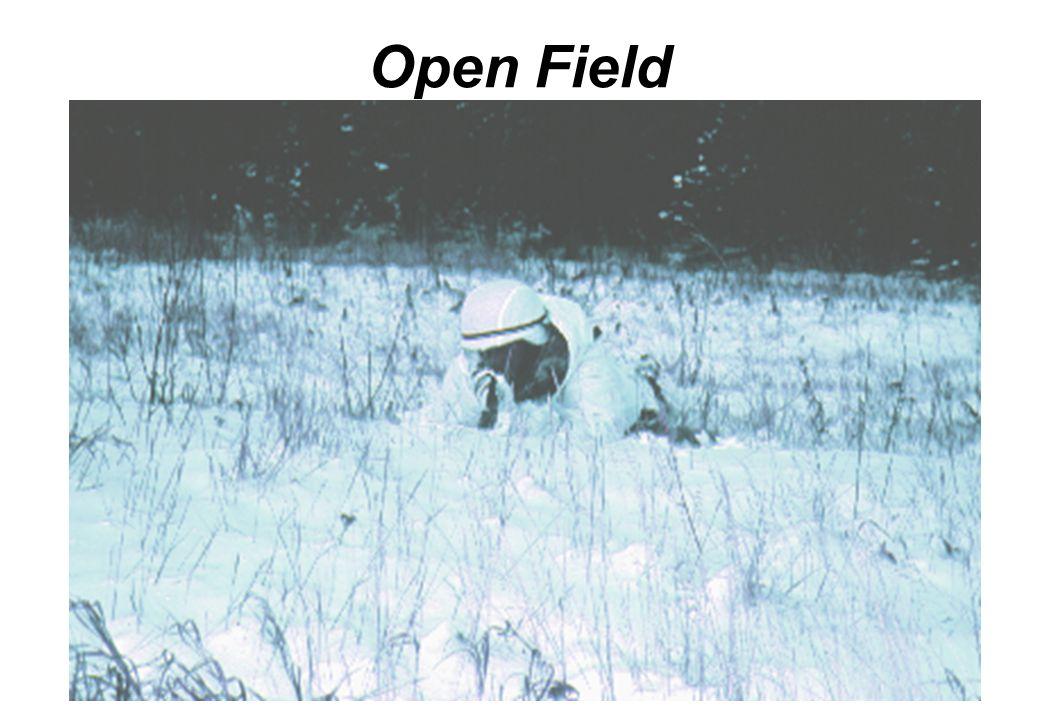 Open Field Above or below treeline