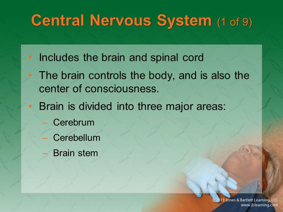 Central Nervous System (1 of 9)