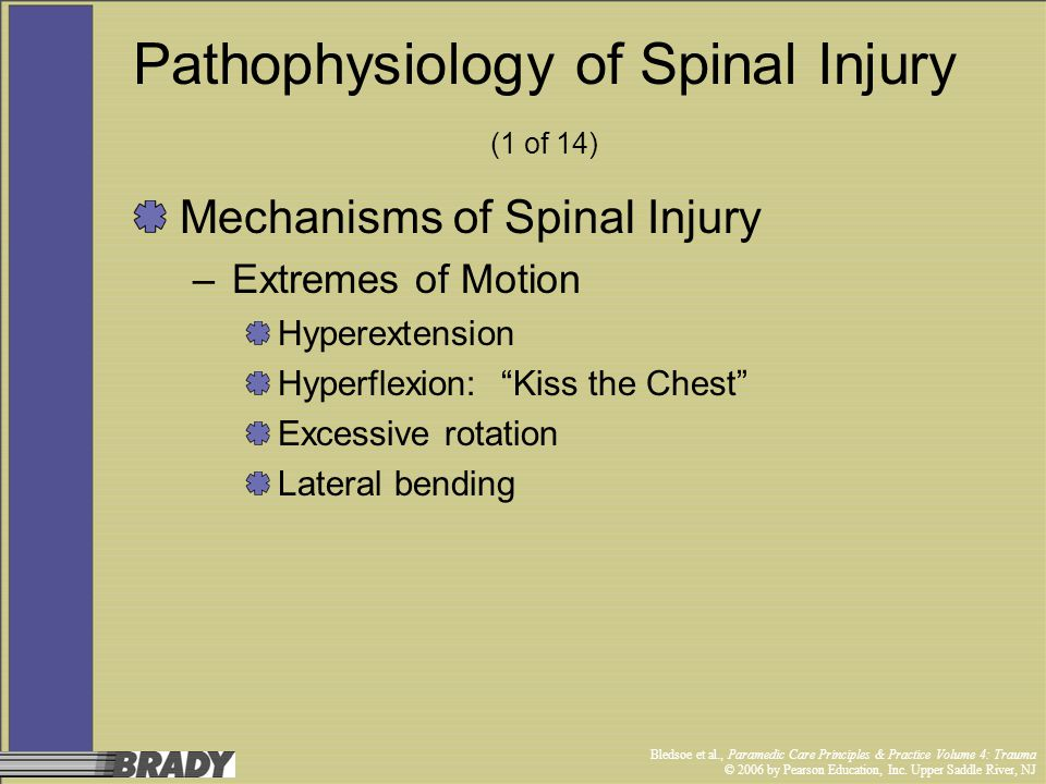 Pathophysiology of Spinal Injury (1 of 14)